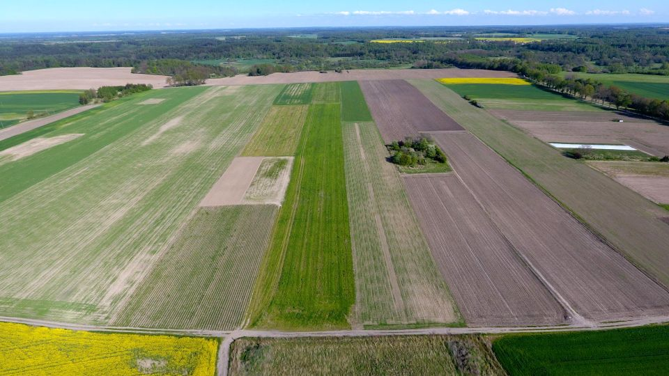 Działka rolna Frombork