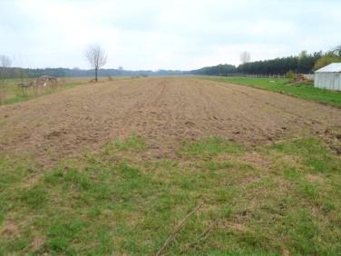 Działka rolna Osiek