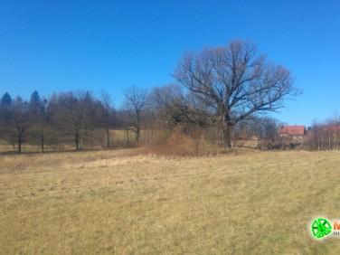 Działka budowlano-rolna Staniszów
