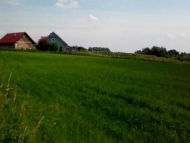 Działka Michałowice