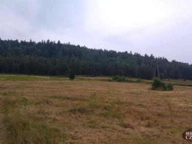 Działka Jelenia Góra