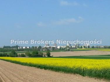Działka rolna Abramowice Prywatne