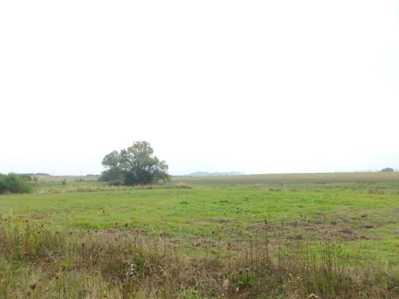 Działka rolna Przylep
