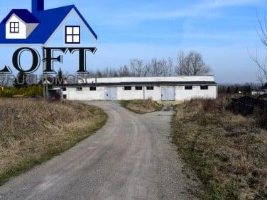 Budynek użytkowy Borek Szlachecki