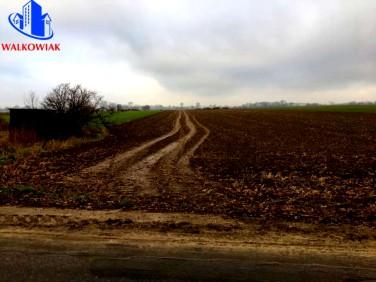 Działka rolna Szlachcin