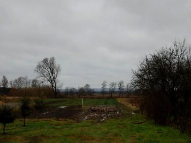 Działka budowlano-rolna Goleniów