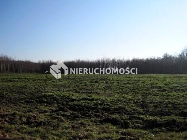 Działka Nowogard