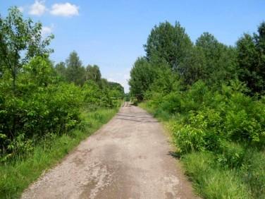 Działka rolna Katowice