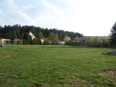 Działka Zielona Góra