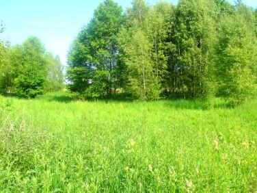 Działka budowlano-rolna Ochla