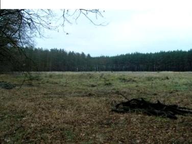 Działka Kiełpin