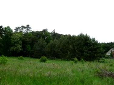 Działka rolna Trzebiechów