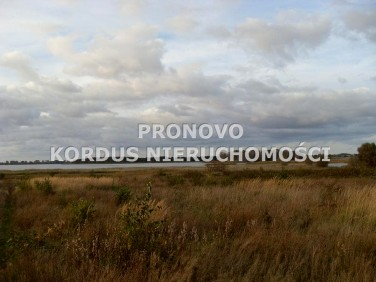 Zabudowana działka Radziszewo