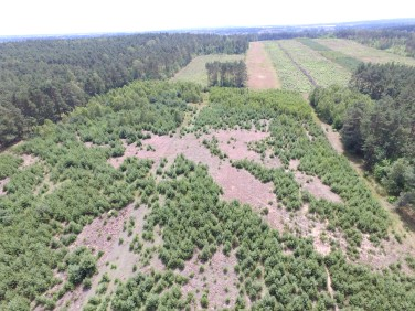 Działka rolna Olimpia