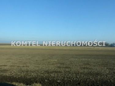 Działka budowlana Inowrocław