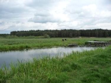 Działka rolna Lubichowo