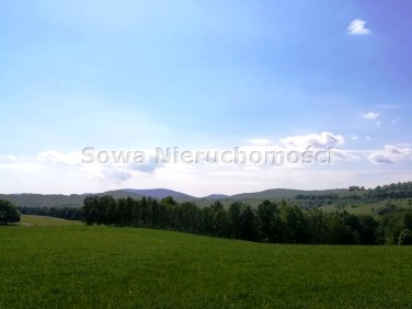 Pusta działka Zagórze Śląskie