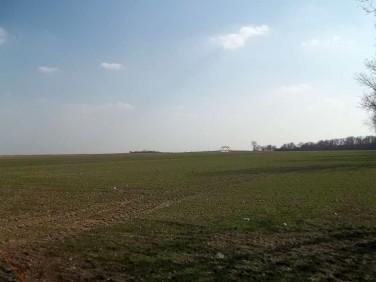 Działka rolna Domaniów