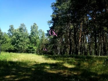 Działka Smogorzewiec
