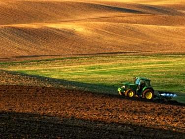 Działka rolna grabnica