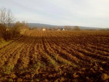 Działka rolna Piórków