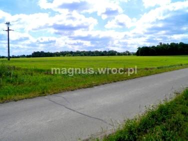 Działka rolna Cesarzowice