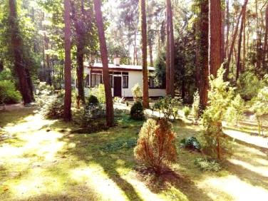 Dom Sokolniki-Las