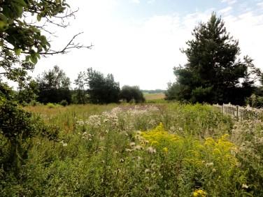 Działka budowlano-rolna Kiełmina
