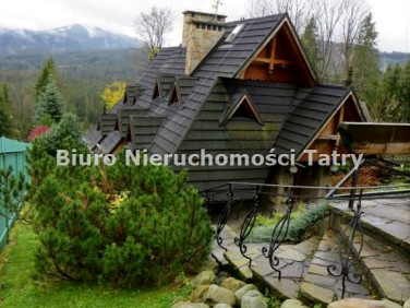 Dom Witów