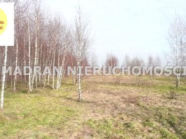 Działka rolna Lutomiersk