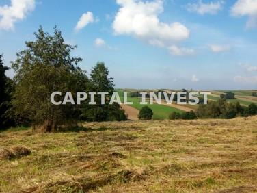 Działka inwestycyjna Wieprz