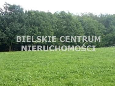 Działka budowlana Czaniec