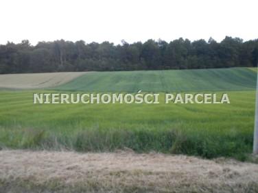 Działka budowlano-rolna Jastrzębie-Zdrój