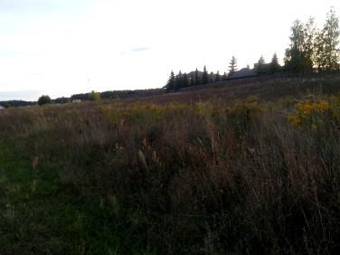 Działka rolna Sowlany