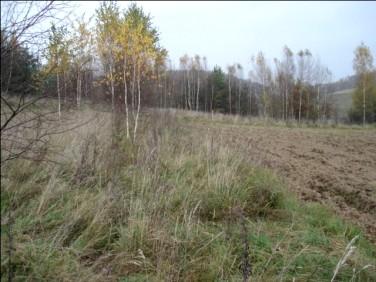 Działka rolna Dywity