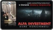 ALFA INVESTMENT