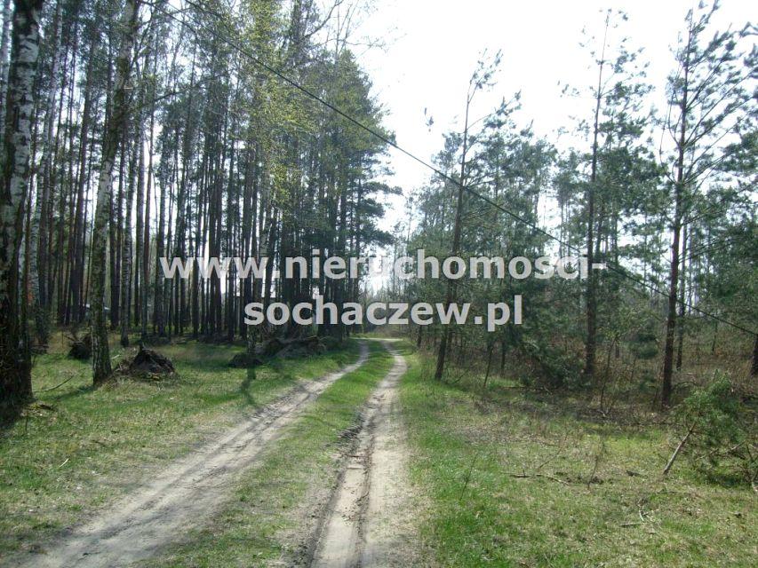 Działka leśna Joachimów-Mogiły