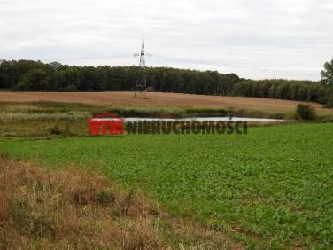Działka rolna Dobrosławiec