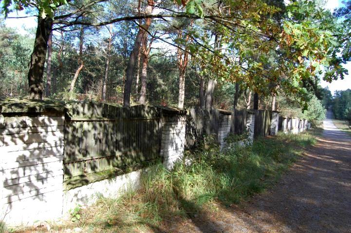 Działka leśna Olsztyn