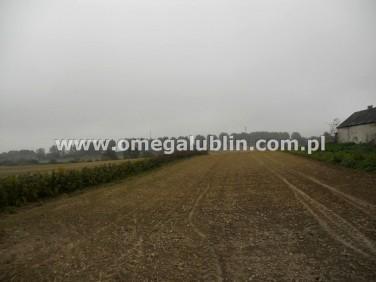 Działka rolna Motycz-Józefin