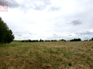 Działka rolna Choroszcz