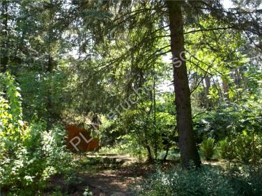 Mieszkanie Podkowa Leśna