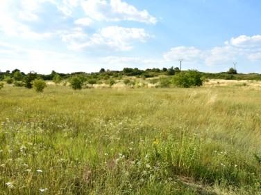 Działka rolna Kielce
