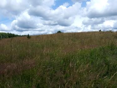 Działka rolna Kwietnik
