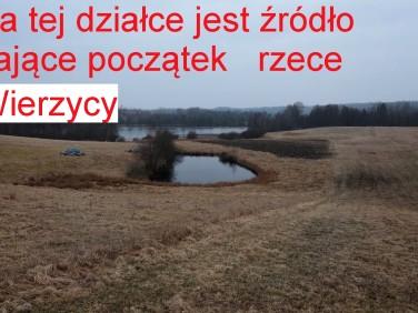 Działka rolna Grabowska Huta
