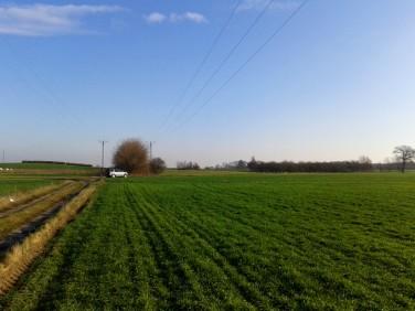 Działka rolna Kolsko