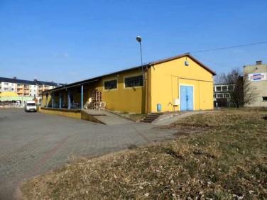 Lokal Żagań