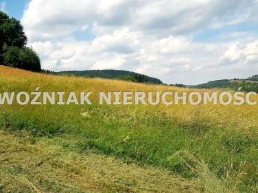 Działka budowlano-rolna Bartnica