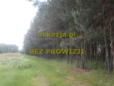 Działka rolna Borek Wielki