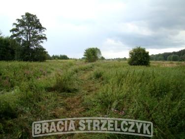 Działka rolna Michałów